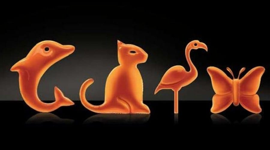 Orange oferă noi avantaje la abonamentele Delfin, Flamingo, Fluture şi Panteră