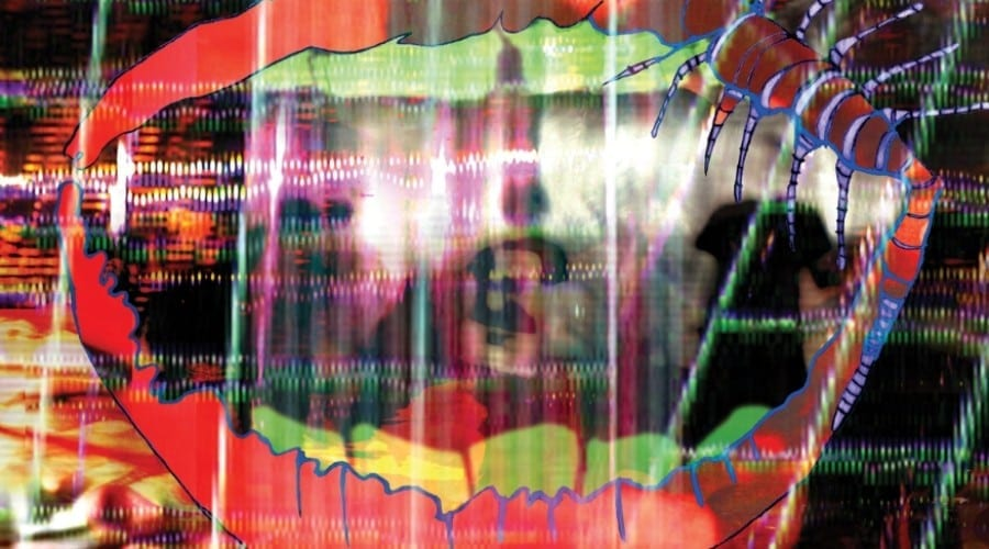 Animal Collective – Centipede Hz – Amanita (Recenzie album)