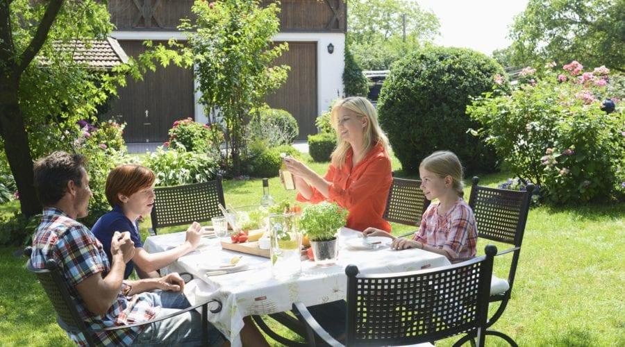 Grădină smart – review cu produse de grădinărit inteligente