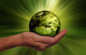Sustenabilitatea, pe plan secund pentru companii în 2020. Cum arată previziunile post-COVID