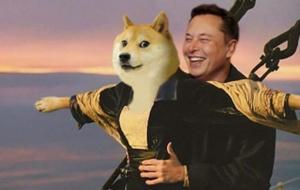 """Musk a negat că ar fi încercat să devină CEO al Apple. Tim Cook vrea să evite scandalul: """"Nu am vorbit niciodată cu Elon"""""""