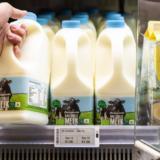 Unele magazine din Polonia vor folosi inteligența artificială pentru a reduce risipa alimentară