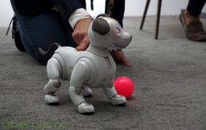 Sony vrea să construiască un robot care să poată câștiga premiul Nobel